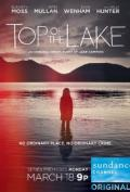 Top of the Lake S01E06