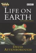 Life on Earth 08